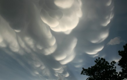mammary clouds